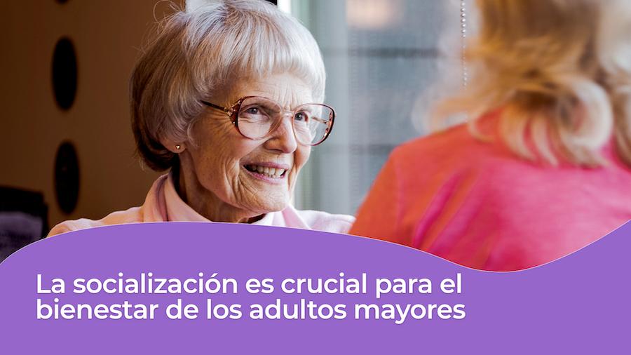 Puntos claves para el cuidado en casa del adulto mayor en geriatricos